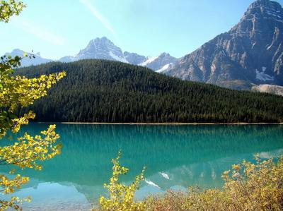 бирюза и золото Альберты Канада Альберта Банф Banf осень озеро горы отражения лес природа пейзаж