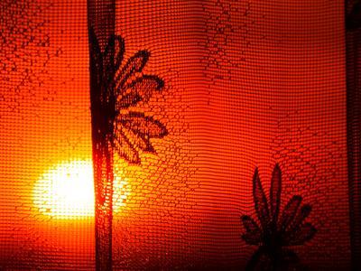 Закаты из моего окна