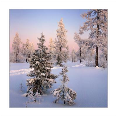 Зимний квадрат...(10) зимний квадрат 10 ЯНАО Новый Уренгой