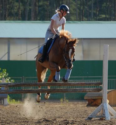 ..полёт нормальный.. конкур спорт лето тренировка девушка