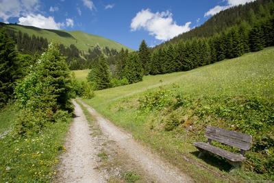 *** Альпы Австрия