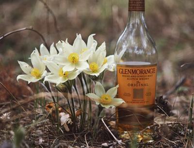 *** виски цветы whisky Glenmorangie