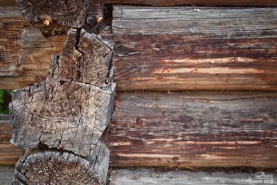 Старый сруб сруб дерево