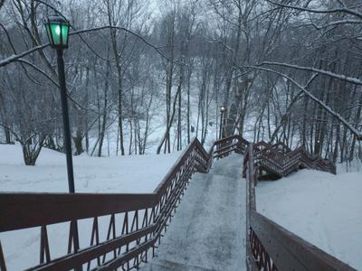 Зелёный фонарь Коломенское зима зимний пейзаж снежная деревья лестница овраг Голосов сугробы зеленый фонарь фонари