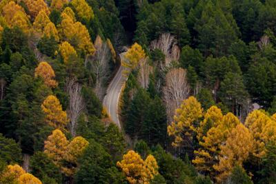 Дорога осень дорога иркут шаманка