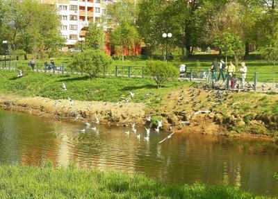 ***Мытищи, Яуза, весна (3) Moscow весна Яуза Мытищи