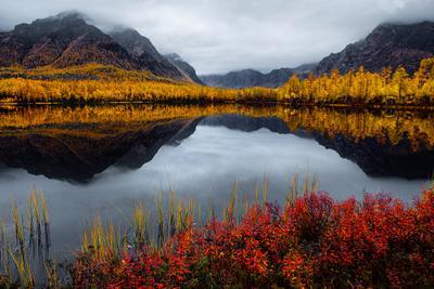 НАСТРОЕНИЕ - ОСЕНЬ 4. Забайкалье Осень Лиственница Кодарский Хребет Озеро