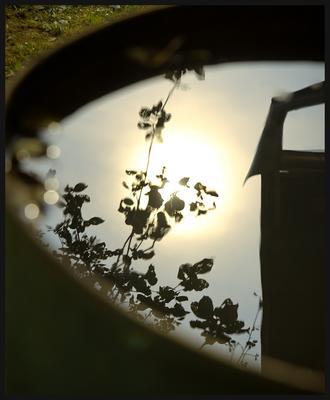 пойманное солнце бочки сад