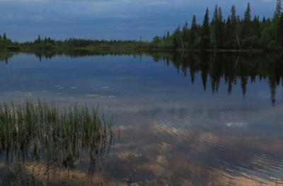 """""""Вечерняя"""". Вечер озеро природа пейзаж"""