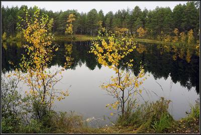 Слушать тишину Карелия, осень, тайга, ламбушка