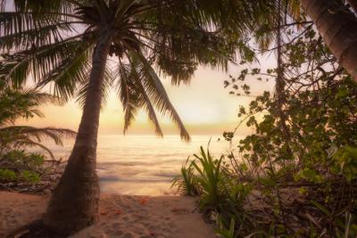 Рассвет на Мальдивах Maldives Coco Palm sunrise Мальдивы