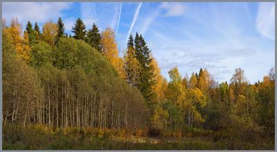 Опять осень.