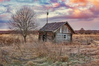Тверская область Тверская область весна деревня