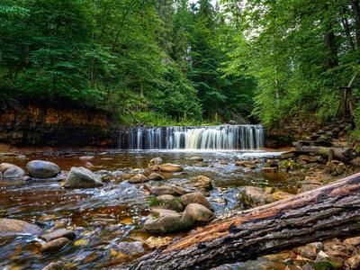 Водопад на реке Прикша, Любытинский район водопад деревья природа
