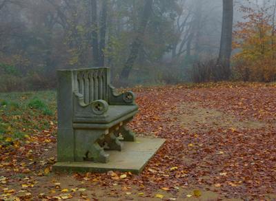 скамейка скамейка бабельсберг парк осень туман утро германия