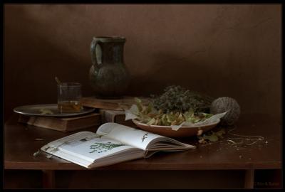 натюрморт с раскрытой книгой книга травы
