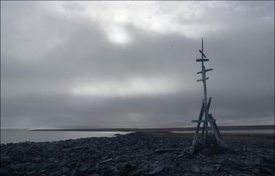 остров Обманчивый Карское море Таймыр остров