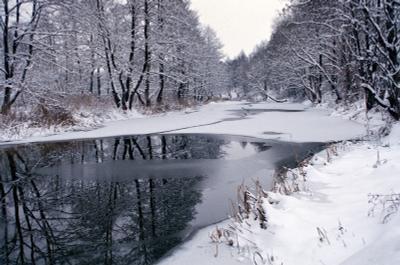 *** снег лед река деревья зима пасмурно пейзаж пленка fujifilm