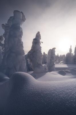 Застывшие в безвременье урал северныйурал гух рассвет зима снег