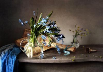 *** цветы пролески