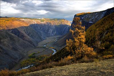 Вечер в долине Чулышмана Горы ущелье река облака лиственница