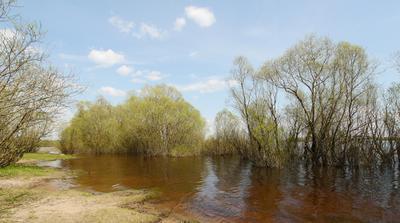 Юный май Великий Новгород река Волхов весна