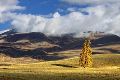 Клубятся горы в облаках... Алтай Горный Курай