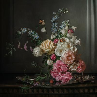 Розы и бабочки натюрморт цветы розы бабочки
