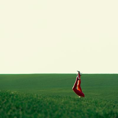 Поле русское поле... поле русскоеполе дали простор поля зелень воздух зной жара hot туфли каблуки колготки