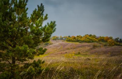 Осенний денёк... Осень природа Русь красота Рол дина глубинка России