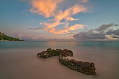 Утренняя палитра океан облака небо восход вода коряга
