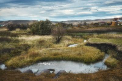 Осень за околицей осень деревня пруд