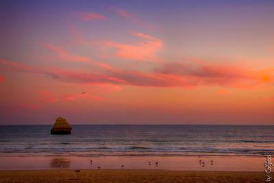 Тишина заката океан море вода скалы закат чайки небо облака волны