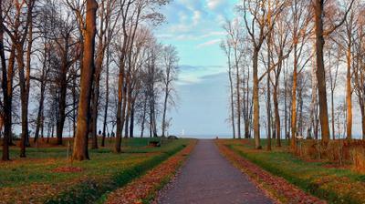 Прогулка по Александрии Александрия осень парк залив