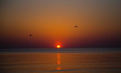 Закат на Балтике закат море чайки Балтика Литва вечер природа пейзаж красота