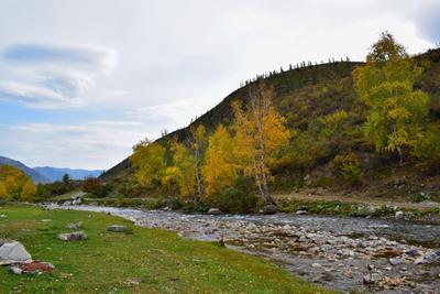 Ильгумень, осень Горный Алтай пейзаж реки Ильгумень nataly-teplyakov