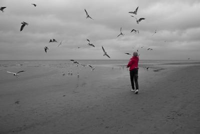 Хмуро Чайки море пляж берег девочка