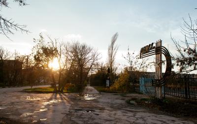 Альбатрос. STALKER солнце Крым