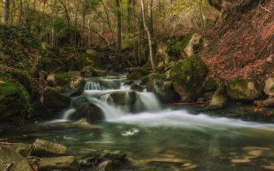 По лесу, по камням...