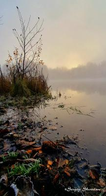 Осеннее утро Осень туман озеро