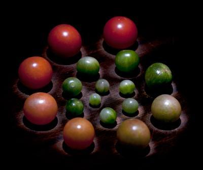 из жизни томатов
