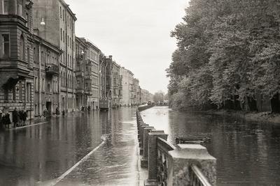 Наводнение 1967 года в Ленинграде