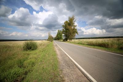 Скоро осень. облака, погода, лето, осень,