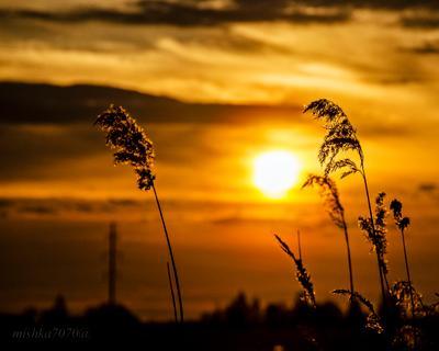Закат Вечер закат природа красиво
