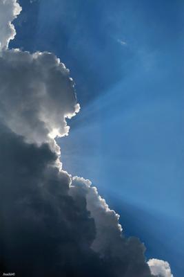 небо небо облака весна