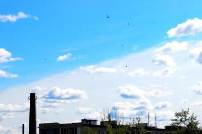 Небо пополам небо необычное