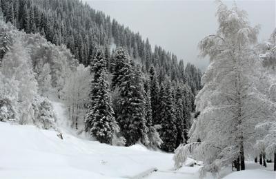 Вспоминая зиму ...