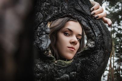 Лесная нимфа. девушка нимфа лес портрет дерево обгоревшее взгляд
