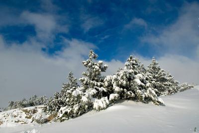Хорошая погода зима Ай-Петри снег небо голубое