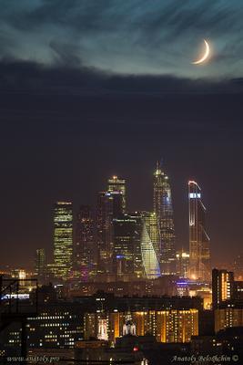 *** Москва Сити